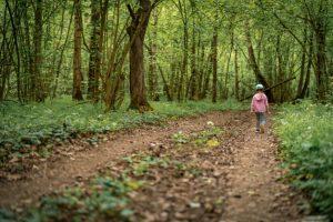 little-child-girl-dense-forest-walks-along-trail-into-depths-forest_127093-2089